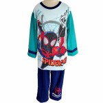 PJA 010519 Spiderman Blue