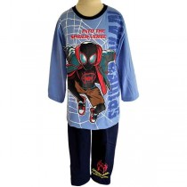 PJA 020519 Spiderman Blue