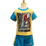 HPA 020814 Spiderman Yellow Blue
