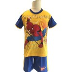 HPA 011017 Spiderman Yellow