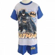 HPA 010718 Batman GB